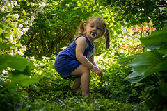 Hannah in the Backyard (Entropic Remnants) Tags: pictures family girl children photography photo child image little photos pics picture pic images panasonic photographs photograph f28 remnants entropic gx1 1235mm
