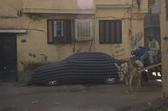 Car in pyjama (Ren Mouton) Tags: auto street car ezel stripes egypt donkey aswan pyjama egypte oudennieuw  straat strepen asuan  tegenstelling  syene aangekleed ezelkar mir assoean  swentet