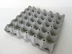 แผงไข่กระดาษ ถาดไข่กระดาษ pulp mold eggtray-5