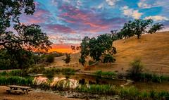 Bass Lake, Labor Day Weekend Sunset, #176 (andertho) Tags: park santa clara county sunset lake reflection cool twilight pond skies purple sundown uncool laborday d800 latesummer josephdgrant cool2 cool3 cool4 uncool2 uncool8 uncool3 uncool4 uncool5 uncool6 uncool7 forwankurniawan