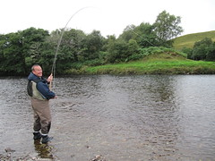 Colin Wilks in the mouth of the Einig fishing in to the Junction pool.