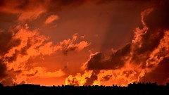 Burning clouds (x76882) Tags: city sunset house clouds amazing burning metropolis nikkor55300 nikond5200