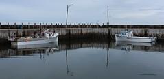 Quai de Pointe-Verte Wharf (1-5) (deplour) Tags: boat fishing wharf bateau quai pche baiedeschaleurs pointeverte