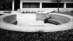 At OSU (Stephen A. Wolfe) Tags: columbus ohio blackandwhite streetphotography theohiostateuniversity fujix100t adobelightroomcc