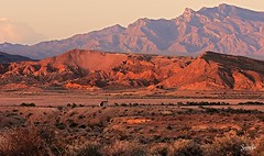 St. Thomas area (LauraCrooks) Tags: life light sunset red summer orange cliff lake mountains art valleyoffire nature colors beautiful beauty st rock outside outdoors fire evening photo high twilight scenery colorful pretty purple desert natural emotion thomas gorgeous scenic may picture indigo cliffs ridge photograph hues valley lakemead area passion alive mead sunlit sumi hue stthomas formations ridges 2015 sumiko vof 05062015