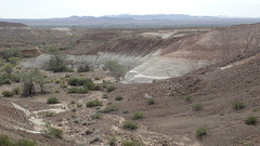 P3312902.jpg (DrPKHouse) Tags: arizona unitedstates loco limestone fieldphoto bouse cibola fieldproject mapunit upperbouse