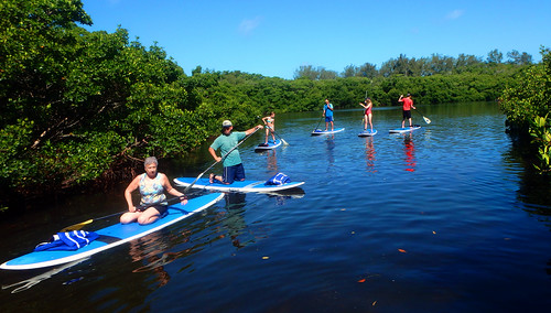 5-17-15 JackDee_Terry & Co Paddleboard Tour Sarasota  (6)