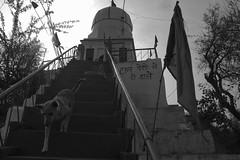 Daan Peti Me Hi Daale. (Aman S Agrawal) Tags: street blackandwhite india white black streetphotography documentary stairway incredible incredibleindia