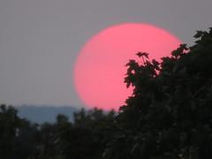 00732135 Sunset (golli43) Tags: neighbours nachbarn himmel heaven wolken streets homesweethome sunrise sunset streetlive spaziergnge regen rain sun sonne katzen september mond wetter