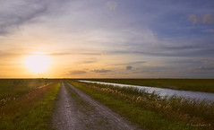 Sunset at The Everglades (Ennio Fratini) Tags: everglades florida northamerica usa agua landscape sky sunset water coralsprings