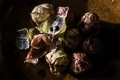 Ballonrebe, reife Frchte (blasjaz) Tags: blasjaz botanik frucht frchte fruit samen samenkapsel heilpflanze homopathie