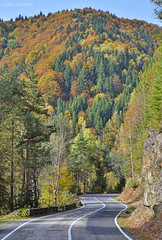DSC_1038 (VictorSZi) Tags: romania autumn toamna october octombrie transfagarasan explore travel