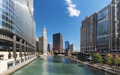 Chicago River at Michigan Avenue Bridge  (12 shot Pano) (Kim Johnson Images) Tags: chicagoriver trumptower chicagoillinois michiganavenue michiganavenuebridge lowes boulevardbank riverwalk boattours sheraton equitablebuilding panorama chicagotribune nbctower wackerdrive