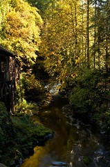 Grist Mill (Vicki Dixon) Tags: gristmill mill water creek fall fallcolors trees