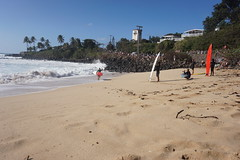 DSC05350 (neilreadhead) Tags: awt1 hawaii oahu waimeabay