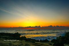 Wave Crash Sunrise (tclaud2002) Tags: wave waves crash sun sunrise clouds horizon rocks water ocean atlantic atlanticocean houseofrefuge hutchinson island stuart florida nature seascape outdoors outside usa