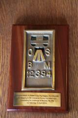 12394 (iainrmacaulay) Tags: ordnance survey flush bracket uk