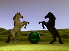 HORSES (Renato Morselli) Tags: white black animali plastica toys giocattoli cavallo cavalli horse due equini sfera unusual flickrfriday inusuale inexplore