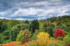 Cornell Plantations in Fall II (agladshtein) Tags: colors sony2470mmf28g cny landscape season nature newyork fall ny trees centralnewyork tompkinscounty forest scenic sonya7r2 outdoors traveldestination beautyinnature hiking ithaca cornelluniversity college school sky clouds storm