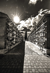 Favara (kalosburcani) Tags: favara cimitero campo santo quiete prospettiva sicily agrigento