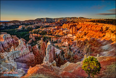 Bryce canyon (hakoar) Tags: barren dry gravel brycecanyon nature dawn hill structure red vista sky pylon view pattern hoodoo sunrise desert scrub canyon formation rocks blue light travel rugged plants pillar landscape utah vivid bryce wilderness mountain colorful unitedstatesofamerica us
