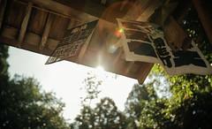 Fushimi Inari-Taisha /  001 (Kenneth Ishii) Tags: canon canon5dmark2 canonef163528lusm flare kennethishii japan kyoto outdoor sun