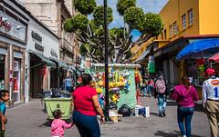 2016 - Mexico - San Luis Potosi - #8 (Ted's photos - Returns late December) Tags: 2016 cropped mexico nikon nikond750 nikonfx sanluispotosi tedmcgrath tedsphotos tedsphotosmexico vignetting slp callehidalgo callehidalgosanluispotosi people peopleandpaths backpack hoodie 8 denim denimjeans streetscene street umbrella sanluispotosiphotos