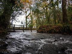 IMG_6744-1 (Photopedaler) Tags: rivers streams ruralscenes trees
