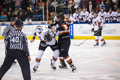 "Missouri Mavericks vs. Fort Wayne Komets, November 11, 2016.  Photo: John Howe/ Howe Creative Photography • <a style=""font-size:0.8em;"" href=""http://www.flickr.com/photos/134016632@N02/30894065811/"" target=""_blank"">View on Flickr</a>"