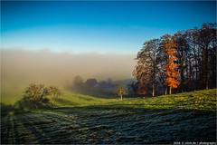 _wetterscheide (l--o-o--kin thru) Tags: teutoburgerwald mist nebel sonne