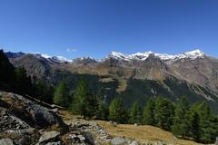 Val d'Aosta - Valsavarenche: vallone di Levionaz, di fronte, il percorso che conduce al colle di Entrelor passando da Orvieille (mariagraziaschiapparelli) Tags: valdaosta valsavarenche levionaz montagna mountain allegrisinasceosidiventa autunno parconazionaledelgranparadiso pngp camminata escursionismo