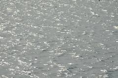 DSC_0229the sea (Asusu1) Tags: malta gozo water sea blue grey ripples backround shimmer