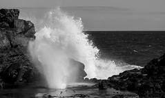 bwblowhole (dougschlock) Tags: hawaii maui nakalele blowhole