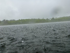 Rainy Day (J.P. EVERETT) Tags: lake nature rain weather alaska outside outdoors drops pond natural outdoor finger wildlife ak surface drop east national disturbed raining pour pouring kenai refuge