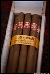 IMG_2611 (aizuddindanian) Tags: dahlia stilllife macro canon leaf availablelight smoke havana cigar 100mm 5d leisure cuban luxury tobacco f28 partagas markii lonsdale 898 aizuddin danian mycigarblog
