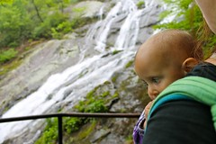 Aenea checks out the downstream falls (jocelyndale) Tags: hiking babywearing aenea crabtreefalls georgewashingtonnationalforest