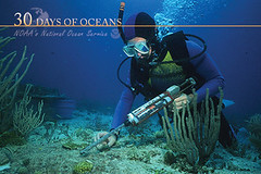 Oceanographer (NOAA's National Ocean Service) Tags: ocean coral underwater noaa nos coralreef career oceanography oceanographer nationaloceanservice oceanjobs oceanfacts