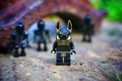 """""""That cold ain't the weather, that's death approaching."""" (xxsjc) Tags: canon skeleton lego anubis afol minifigures toyphotography shellycorbett uploaded:by=flickrmobile flickriosapp:filter=nofilter xxsjc"""