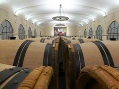 New Cellars at Pavie