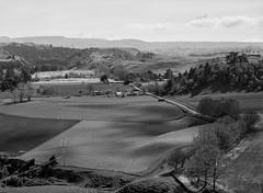 Moawhango Valley, Taihape East (gomezthecosmonaut) Tags: newzealand bw ilforddelta100 fujigx680 ruralproject 150mmgxm moawhangovalley