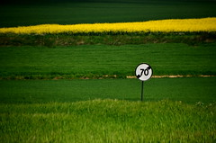 Septante (Jean-Luc Lopoldi) Tags: speed countryside champs route roadsign campagne panneau colza