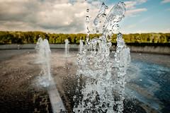 water (papedo_pp) Tags: sterreich mai 2015 klosterneuburg