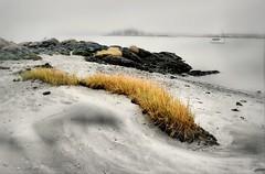 Between Sea and Sand (floralgal) Tags: seascape landscape lowtide longislandsound ryenewyork newyorklandscape sandandsurf westchestercountynewyork newyorkseascape miltonpointryenewyork