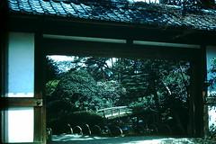 4-1-52- Emperor's Palace- Kyoto- Inner Garden- Japan (foundslides) Tags: irmalouisecarter irmalouiserudd asia nippon japanese pacific east orient oriental 1952 1950s tour tourists americantourist air travel vintage retro slides slide kodachrome kodak photography photos pics pix oldphotos oldpictures oldslides transparency transparencies colorslides film slidefilm slideshow culture irma lousie rudd irmarudd postwar japan ww2 wwii tokyo kyoto nikko travelling trip vacation holiday family traveller photographic outdoor landscape redborder foundslides johnrudd analog slidecollection
