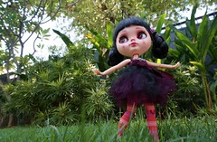 A little dance in the grass