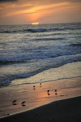 Oceanside Sunset (D Cunningham) Tags: ca sunset oceanside dcunningham