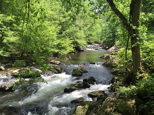 "Smoky Mountain National Park • <a style=""font-size:0.8em;"" href=""http://www.flickr.com/photos/20810644@N05/17930263486/"" target=""_blank"">View on Flickr</a>"