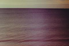 Galleries of water (Kelly Marciano) Tags: film analog 35mm canona1 fujichrome velvia100f xpro crossprocess slidefilm soft fuzzy light purple swell horizon beach sea ocean sky minimalism analogue peggoty peggottybeach yowler