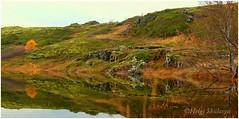 Iceland colors (Helgi Skulason photographer) Tags: helgiskulason helgiskulasongmailcom autumn autumnleaves reflections iceland icelandic ijslandse islandese sland islanda ingvellir