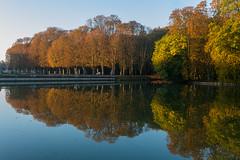 Golden october (clara.tardis) Tags: landscape autumn lumix g6 panasonic 20mm